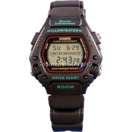 Casio DW-290-1V Original & Genuine Watch